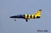 Baltic Bees - L-39C Albatross: Valery Sobolev