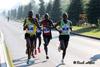 Champions - marathon OM
