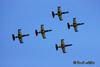 Baltic Bees - L-39C Albatross
